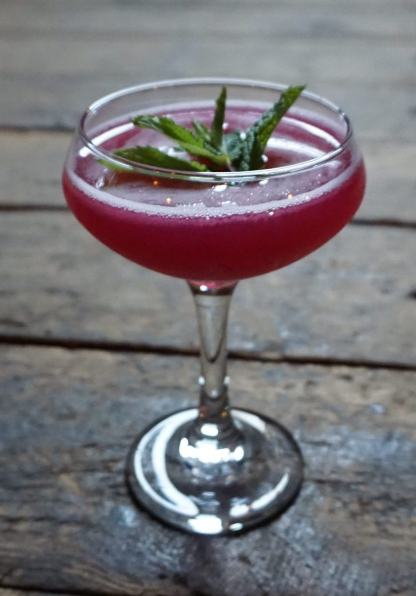 prickly pear by the paw agave recipe