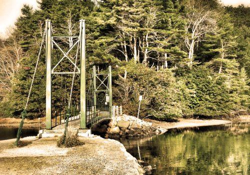 Wiggly Bridge Steadman Woods